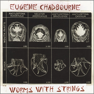 wormswithstrings